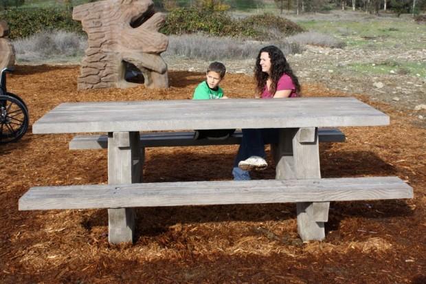 Precast Wood Grained Picnic Table